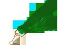 Panglica:  Verde