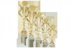 Trofeu Standard - 4013 D