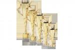 Trofeu Standard - 4311 A