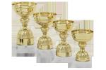 Cupă Standard - 6203 A