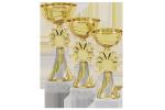 Cupă Standard - 6305 A