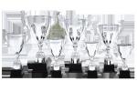 Cupă Premium - 1316 C