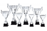 Cupă Premium - 1316 B