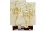 Cupă Premium - 1401 A
