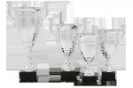 Cupă Premium - 1402 C