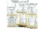Trofeu Premium - 2236 C