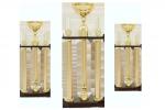 Trofeu Premium - 2431 C