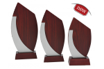 Trofeu din lemn - Fa51 A