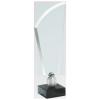 Trofeu din sticlă - U17 A